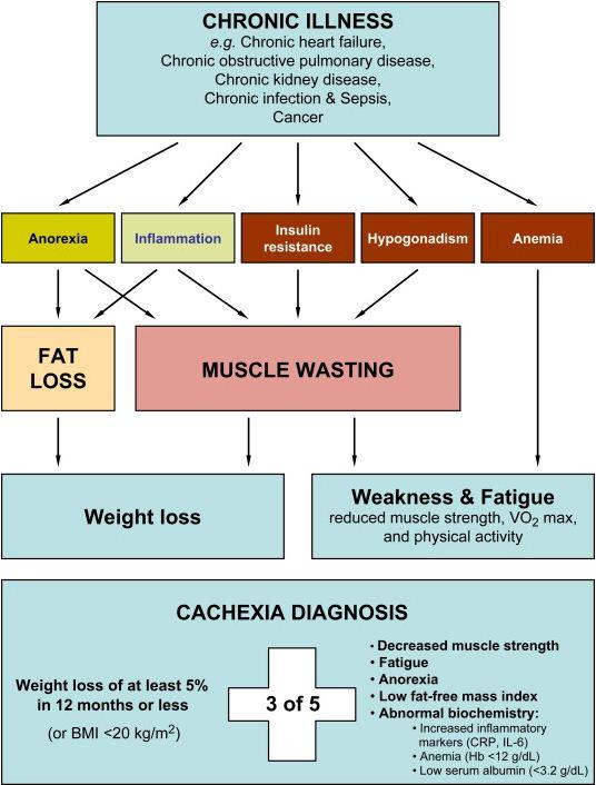 Vitamin K supplements may improve glucose metabolism, insulin sensitivity: Review