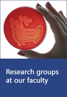 Research groups at our faculty
